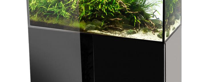 aquarium schwarz hochglanz