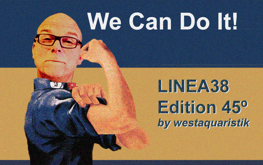 Yes We Can!  —  LINEA38 Edition 45˚