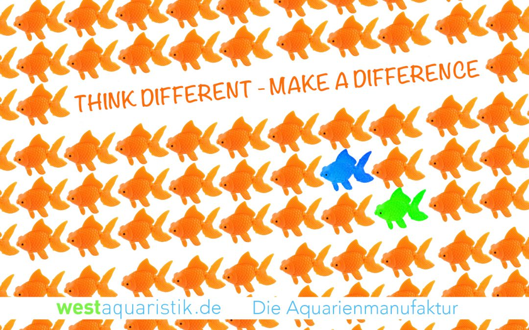 Think Different – Make a Difference!