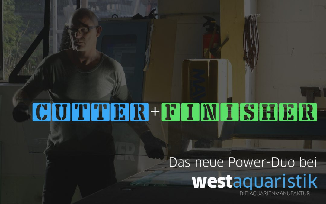 westaquaristik Markus Weigel